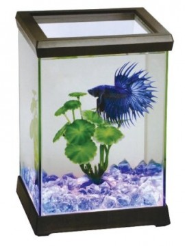 Betta Space Kit 4.95 L com luz LED Preto