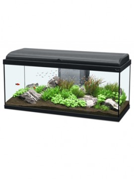 Aquario KIT Aquadream 100x30 LED