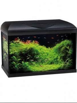 WAVE Aquario Basic 80x32x49 Iluminacao LED 95L