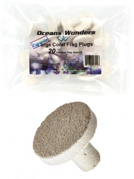 OCEANS WONDER Large Plugs 30 mm - 20 un