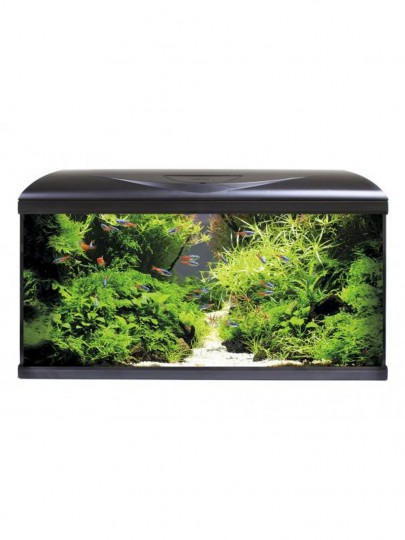Aquario AMTRA System 80 x 32 x 48 LED 18W 85L