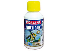 Dajana Multicure 250 ml